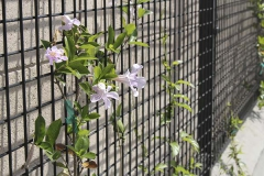 Fence-panels-San-Diego-Ca